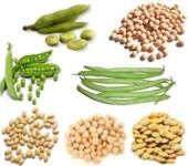Importancia del consumo de legumbres en nuestra nutrición