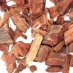 El té de corteza de encino sirve para los dientes