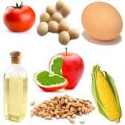 Alimentos transgénicos y sus efectos en el organismo