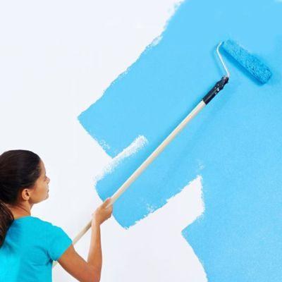 Paint Roller To Make Texyure