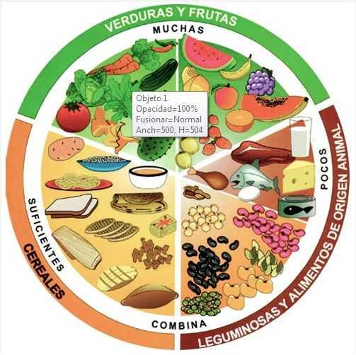 Preguntas sobre el tema del plato del buen comer
