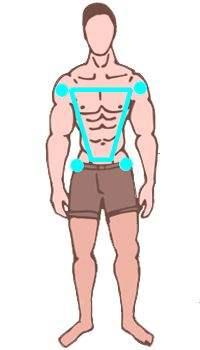Las crónicas de Metabolismo
