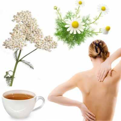 El té de manzanilla con o sin milenrama sirve para el dolor de espalda