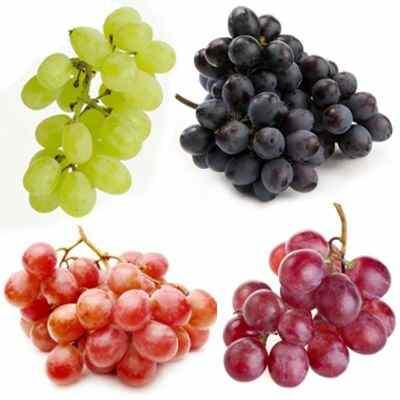El jugo de uva es antioxidante