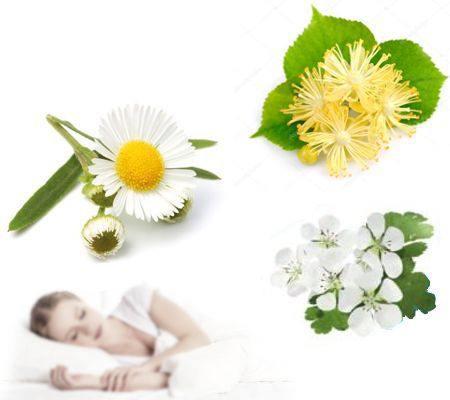 Beneficios de tomar té de manzanilla, espino albar y flor de tila antes de dormir