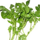 ¿Para qué es bueno comer la planta llamada berros