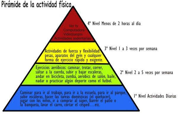 ¿Para qué sirve la pirámide de actividad física?