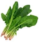 ¿Para qué se utiliza la hoja de espinaca?