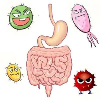 ¿Qué hacer contra la gastroenteritis?