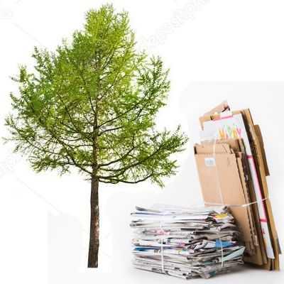 ¿Qué evitamos al reciclar la basura?