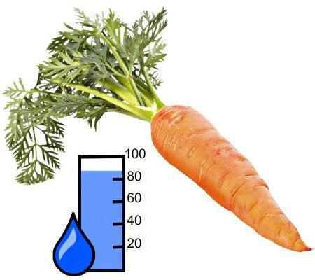 ¿Cuánta agua tiene la zanahoria?