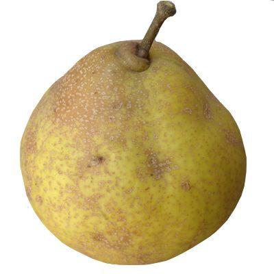 Es bueno comer pera