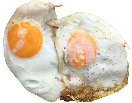 Es importante el consumo de huevo en humanos