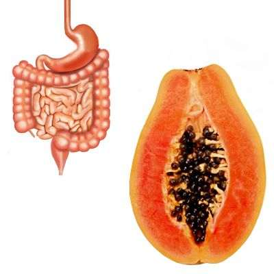 La papaya sirve en la digestión
