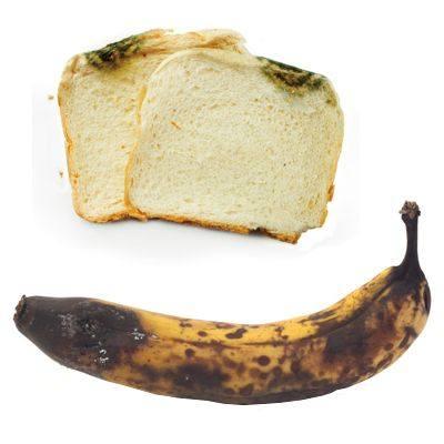 ¿A qué se debe que los alimentos se descomponen?