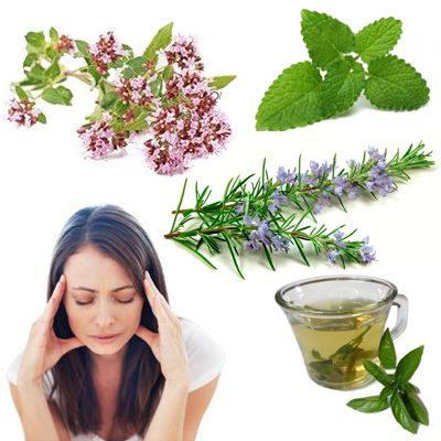 Té de hierbas medicinales para aliviar el dolor de cabeza