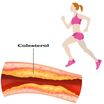 Efectos del ejercicio sobre el colesterol