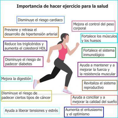 ¿Cómo contribuye el ejercicio al desarrollo de nuestro organismo?