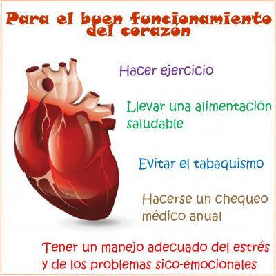 ¿Cómo tener un buen funcionamiento del corazón?