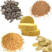 Importancia del consumo de las semillas para el ser humano