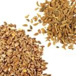 Semillas digestivas para mejorar la digestión