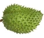 Descripción física de la fruta guanábana