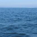 Porque no se puede consumir el agua del océano
