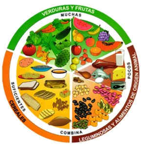 Formación de una dieta alimenticia ideal