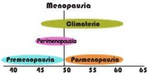 ¿Qué cambios se presentan en la perimenopausia?