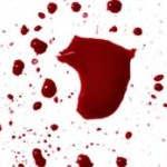 ¿Por cuantos litros de sangre está compuesto el cuerpo humano?