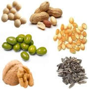 ¿Cuáles son las principales plantas oleaginosas?