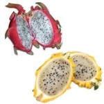 ¿Para qué sirve la pitahaya como planta medicinal?