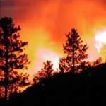 Porque es malo quemar bosques