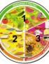 ¿Cuántas porciones debemos comer al día del plato del buen comer?