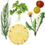Remedios naturales drenantes