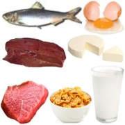 ¿De dónde se puede obtener la vitamina B12?