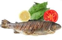¿Se puede vivir sin comer carne ni pescado?
