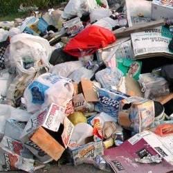 ¿Puede la basura afectar la salud de las personas?