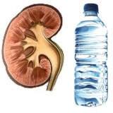 ¿Por qué me duelen los riñones si tomo mucha agua?