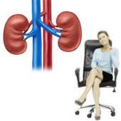 ¿Estar mucho tiempo sentado afecta los riñones?