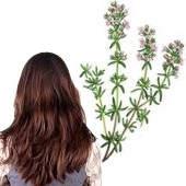 Propiedades del enjuague de tomillo para el cabello
