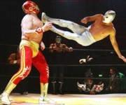 Ventajas de practicar lucha libre
