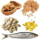 ¿Que función cumple el omega 3 en el organismo?