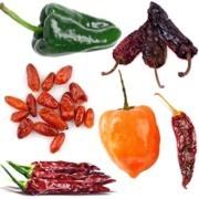 Utilidad del chile