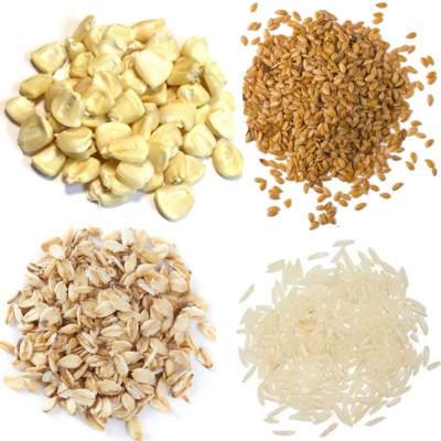 ¿Cuáles son los alimentos llamados y considerados granos?