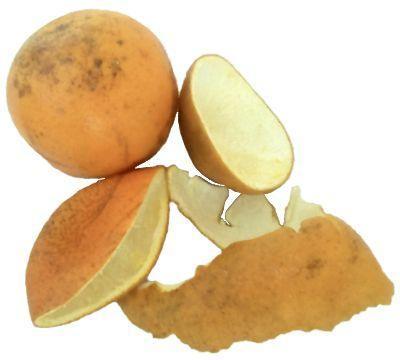¿Para qué sirve la cáscara de naranja como planta medicinal?