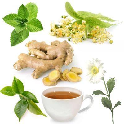 Propiedades y beneficios de tomar infusiones de hierbas