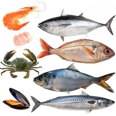 Lista de pescados y mariscos por temporada