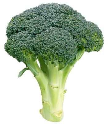 Importancia del brócoli