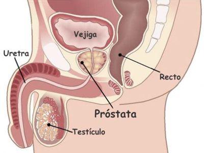 Cuidados de la próstata desde joven